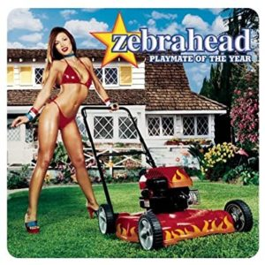 zebrahead-playmate