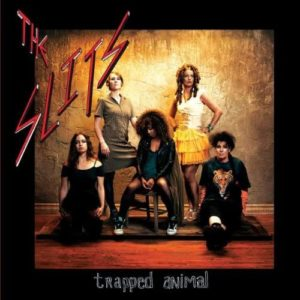 slits-trapped