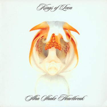キングス・オブ・レオン(Kings of Leon)の名曲名盤10選【代表曲・隠れた名曲】