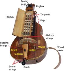 donovan-hurdy-gurdy