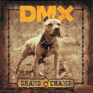 dmx-champ