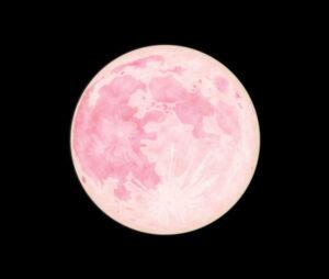 nick-drake-pink-moon-pic